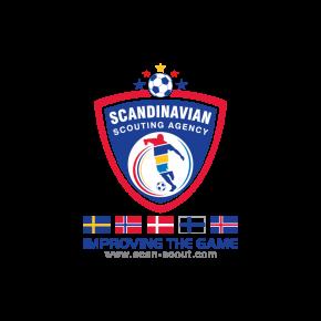 Scandinavian scouting agency